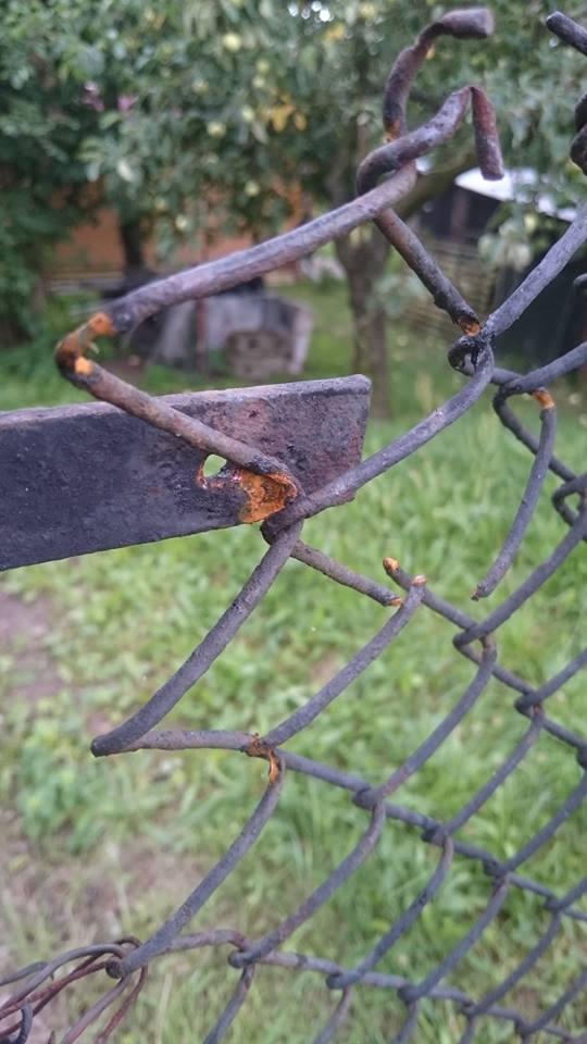 preskoky-plot